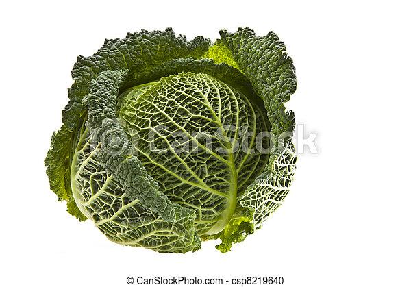 Fresh organic cabbage isolated on white  - csp8219640