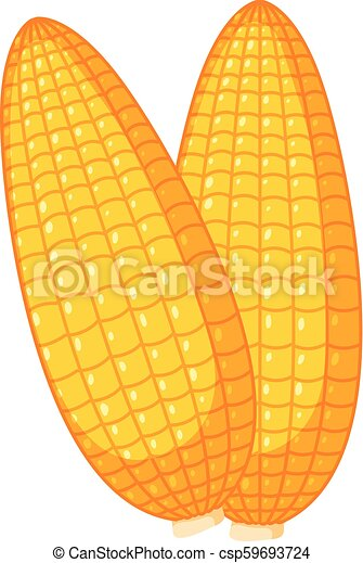 Fresh organic corn on white background - csp59693724