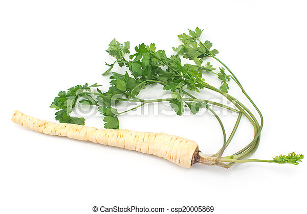 Fresh parsley with root and leaf on white - csp20005869