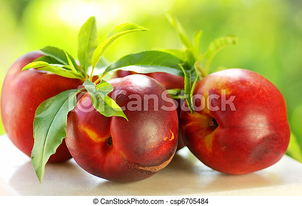 fresh peach fruits with green leaves - csp6705484