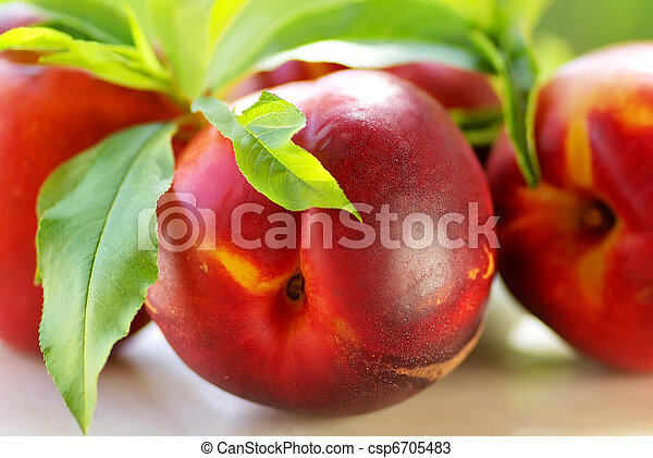 fresh peach fruits with green leaves  - csp6705483
