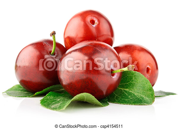 fresh plum fruits with green leaves - csp4154511