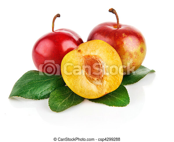 fresh plum fruits with green leaves - csp4299288
