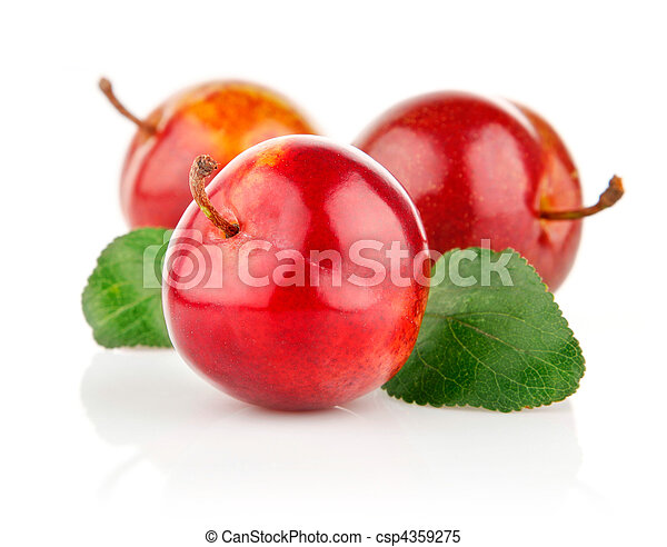 fresh plum fruits with green leaves - csp4359275