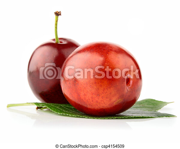 fresh plum fruits with green leaves - csp4154509