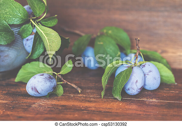 Fresh plums with green leaves on the dark wooden table. Shallow depth of field. Toned. - csp53130392