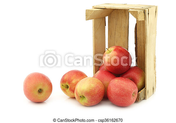 fresh red and yellow apples - csp36162670