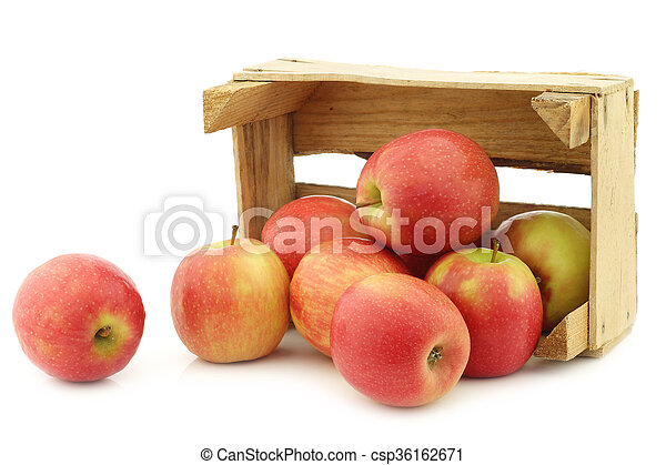 fresh red and yellow apples - csp36162671