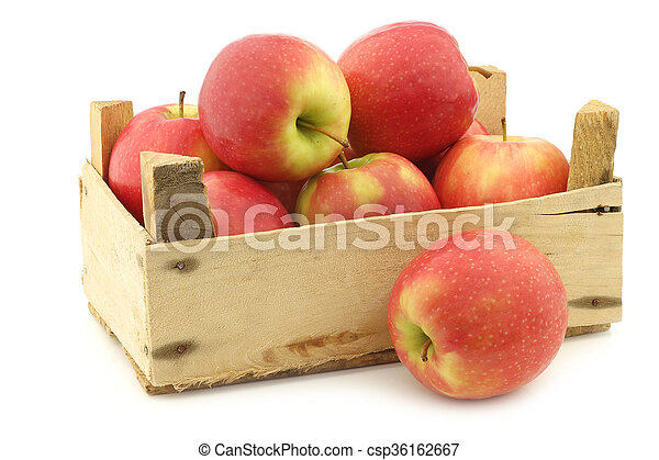 fresh red and yellow apples - csp36162667
