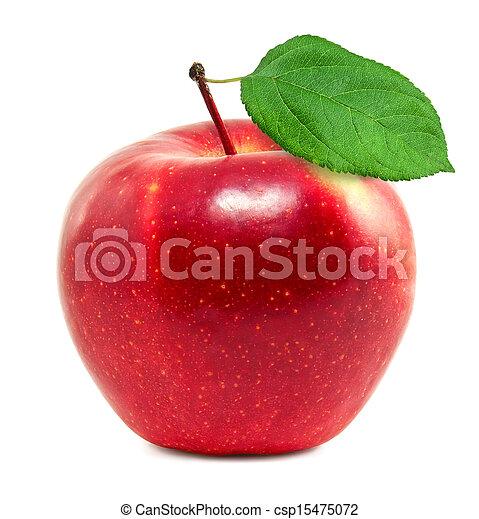 Fresh red apple - csp15475072