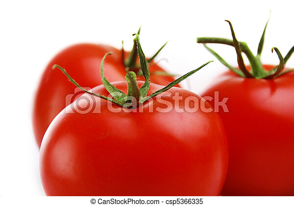 Fresh Red Tomato isolated on white background - csp5366335