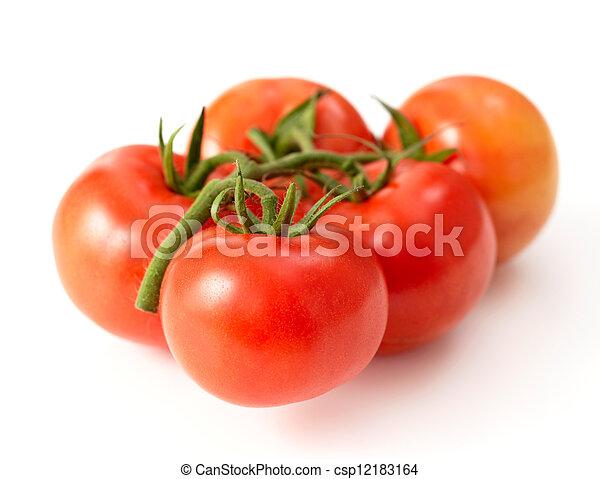 fresh red tomatoes - csp12183164