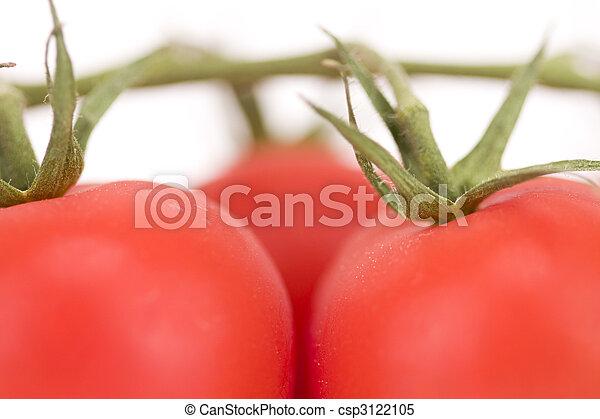 Fresh red tomatoes - csp3122105