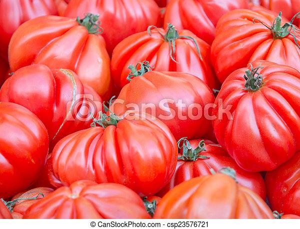 Fresh red tomatoes - csp23576721