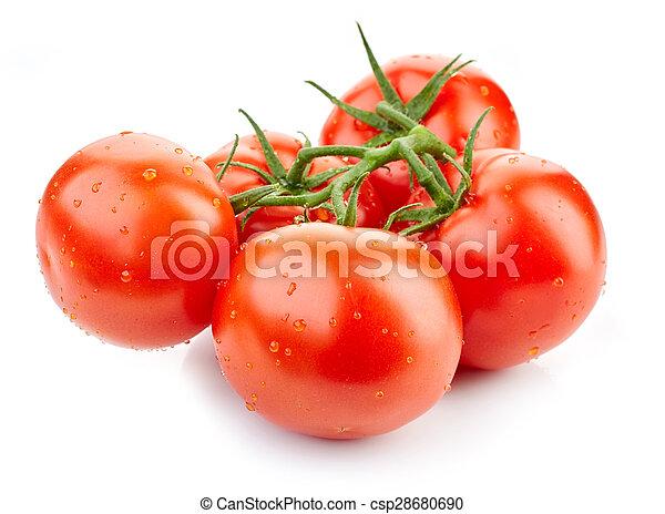 fresh red tomatoes - csp28680690