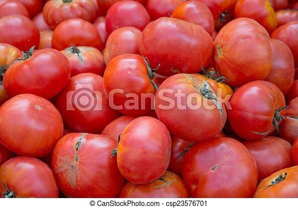 Fresh red tomatoes - csp23576701