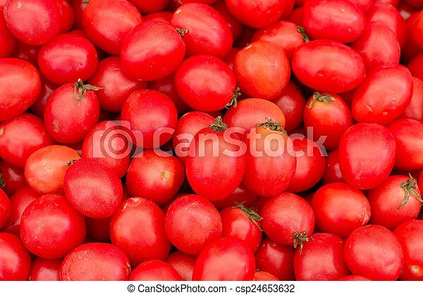 Fresh red tomatoes - csp24653632
