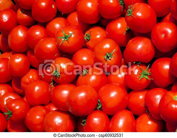 Fresh red tomatoes. - csp60932531