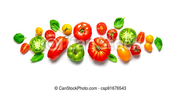 Fresh ripe tomatoes of different varieties with basil leaves isolated on white panoramic background - csp91676543