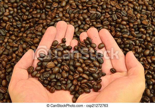 Fresh roasted coffee grain in hand - csp21272763