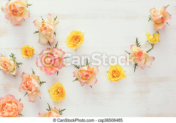 Fresh roses flower, abstract backgr - csp36506485