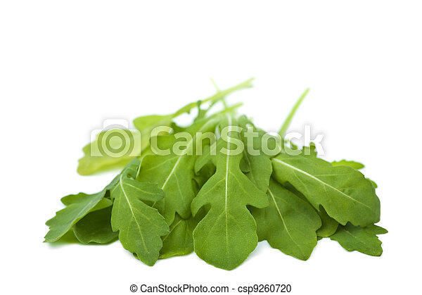fresh rucola isolated - csp9260720