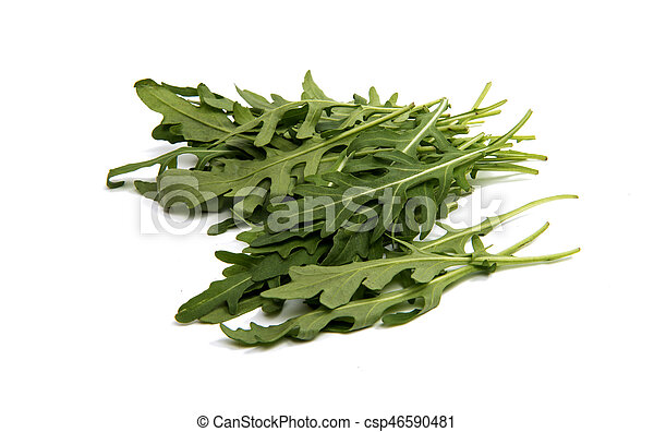 fresh rucola leaves isolated - csp46590481
