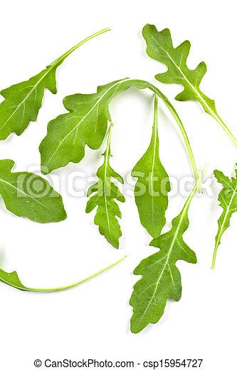 fresh rucola leaves - csp15954727