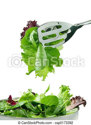 Fresh salad leaves - csp0173392