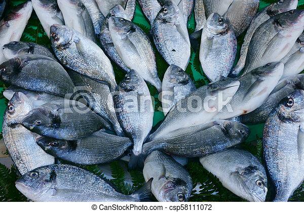 fresh seafood, fish on the market - csp58111072