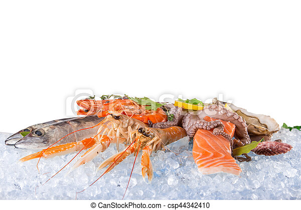 Fresh seafood on crushed ice. - csp44342410