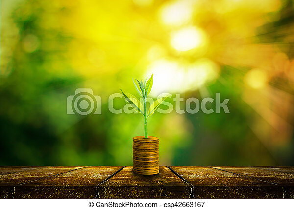 Fresh small tree growth on gold coins and wooden tabletop