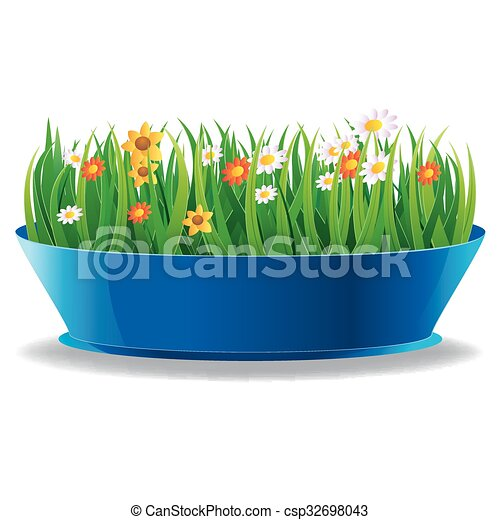 Fresh spring green grass in a pot - csp32698043