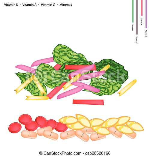 Fresh Swiss Chards with Vitamin K, A and C - csp28520166