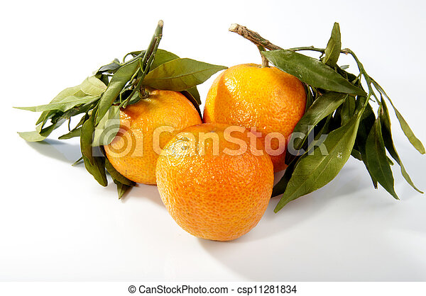 fresh tangerine fruits with green leaves isolated - csp11281834