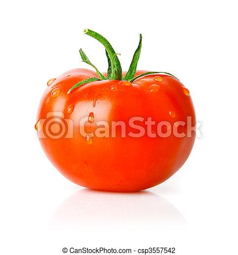 fresh tomato fruit with green leaf - csp3557542