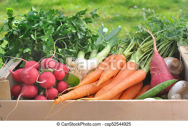 fresh vegetable in a wooden crate - csp52544925