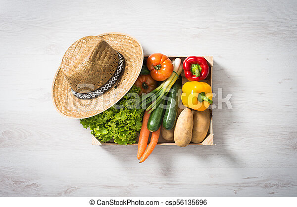 Fresh vegetables in a crate - csp56135696