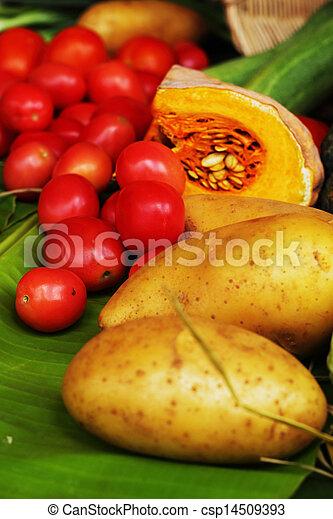 Fresh vegetables - csp14509393