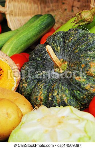 Fresh vegetables - csp14509397