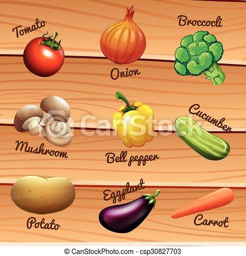 fresh vegetables with names illustration