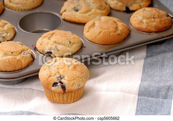 Fresh warm blueberry muffins in a muffin pan with one in front - csp5605662