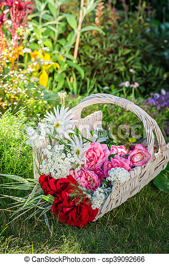 Freshly cut colorful flowers in sunny garden.