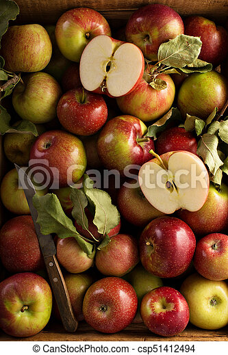 Freshly picked apples in a wooden crate - csp51412494