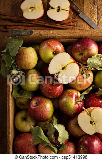 Freshly picked apples in a wooden crate - csp51413998