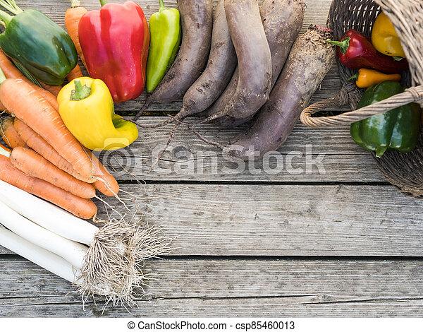 Freshly picked organic home-grown vegetables - csp85460013