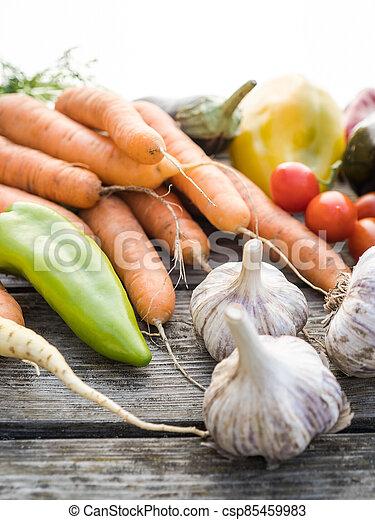 Freshly picked organic home-grown vegetables - csp85459983