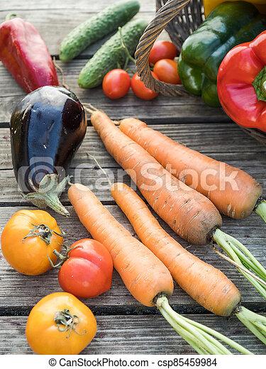 Freshly picked organic home-grown vegetables - csp85459984