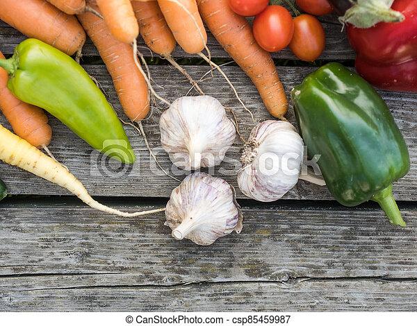 Freshly picked organic home-grown vegetables - csp85459987
