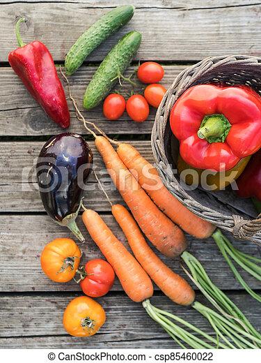 Freshly picked organic home-grown vegetables - csp85460022